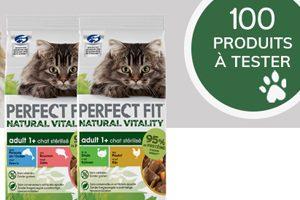 test sachet fraicheur pour chats