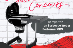 barbecue Weber Performer